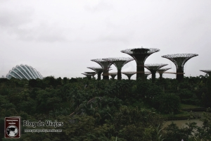singapur-gardens-by-the-bay-supertree