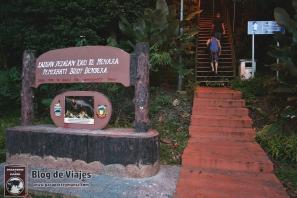 Borneo - Sabah - Kota Kinabalu Trekking to Observatory Deck-mod