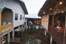 Borneo - Sabah - Weston Wetland Park (10)-mod
