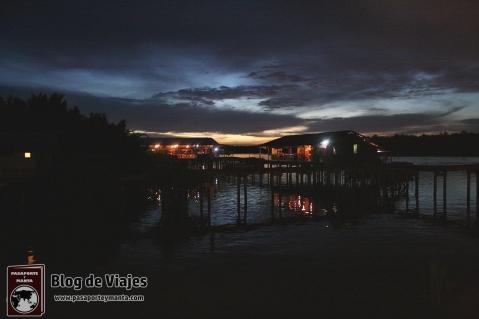 Borneo - Sabah - Weston Wetland Park (11)-mod
