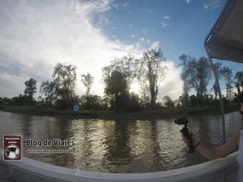 Borneo - Sabah - Weston Wetland Park (3)-mod
