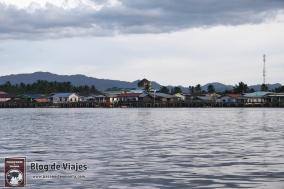 Borneo - Sabah - Weston Wetland Park (5)-mod