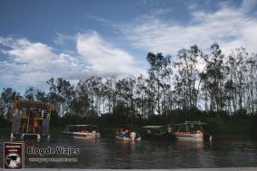 Borneo - Sabah - Weston Wetland Park (9)-mod