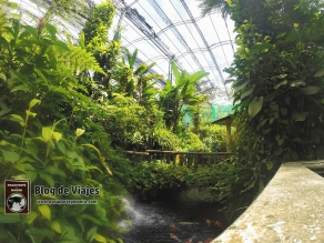 Kuala Lumpur - Buterfly Park-mod