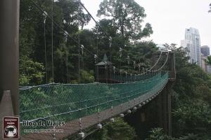Kuala Lumpur - Canopy Walks