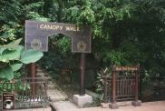 Kuala Lumpur - Canopy Walks (4)-mod