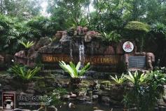 Kuala Lumpur - Orchid & Hibiscus Gardens (2)-mod