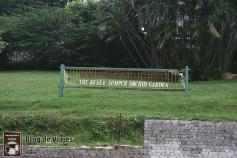 Kuala Lumpur - Orchid & Hibiscus Gardens (3)-mod