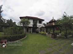 Kuala Lumpur - Orchid & Hibiscus Gardens-mod