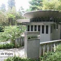 Kuala Lumpur - Perdana Botanical Gardens (1)-mod