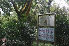 Kuala Lumpur - Perdana Botanical Gardens (2)-mod