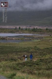 Highland Meridionales y Lago Ness (1)