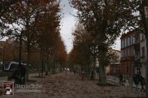 Francia - Tolouse (38)