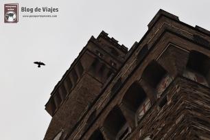 Florencia - Palazzo Vecchio (2)
