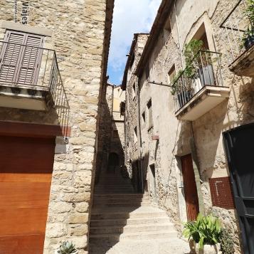 Besalú - Callejeando por sus calles (1)